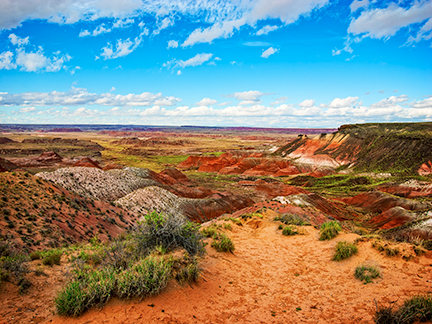 Painted Desert - Nizhoni Point